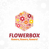 Logo flower box. Logo template for a flower shop, a beauty salon. Vector illustrations of colorful flowers on a stylized background Royalty Free Stock Images
