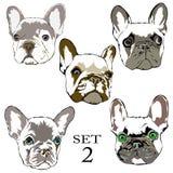 Logo French-Bulldoggenhandzeichnungssatz Lizenzfreie Stockbilder