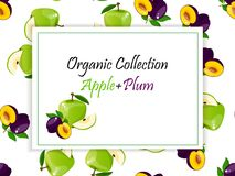 Logo of fresh juice. Logo of fresh green apple and plum juice. Vector square label, apple and plum jam, sauce or juice label on a seamless pattern background Stock Images