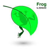 Logo with a frog on a bright green leaf. Stock Images