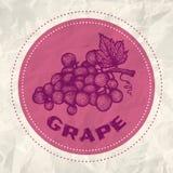 Logo of grape Stock Photo