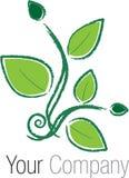 Logo green herb Stock Image