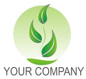 Logo green leaves Royalty Free Stock Photography