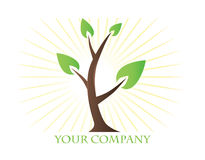 Logo Green Tree Stock Photos