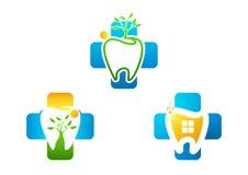 Logo grow healthy dental. Dental clinic logo set. an illustration representing logo grow healthy dental Stock Images