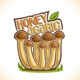Logo Honey Agarics Mushrooms de vecteur Photos stock
