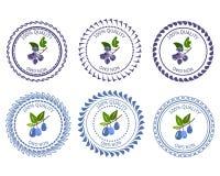 Logo Honeysuckle och shadberry Arkivfoto
