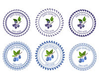 Logo Honeysuckle and shadberry Stock Photo