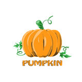 Logo Icon Design Pumpkin Farm stock afbeeldingen
