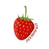 Logo Icon Design Strawberry Farm Photos libres de droits