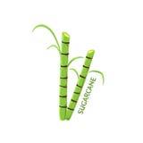 Logo Icon Design Sugarcane Farm Images libres de droits
