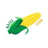 Logo ikony projekta kukurydzy kukurudzy gospodarstwo rolne Zdjęcie Royalty Free