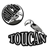 logo with the image of a toucan Royalty Free Stock Photo
