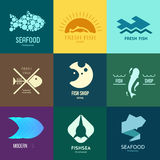 Logo inspiration for shops, companies, advertising or other business. Vector Illustration, graphic elements editable for design with fish Stock Image
