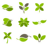 Logo leaf. Green leaves - collection of eco logos. vector illustration Stock Images