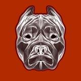 Logo linéaire principal de pitbull Images stock