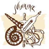 Logo marine Stock Photos