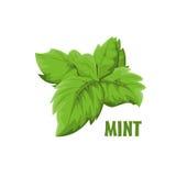Logo Mint-Bauernhofdesign Lizenzfreies Stockfoto
