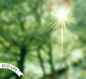 Logo mit undeutlichem Foto als Hintergrund Lizenzfreie Stockfotos