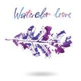 Logo moderne créatif de feuille d'arbre d'eco peint dans l'aquarelle Photo libre de droits