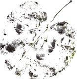 Logo moderne créatif de feuille d'arbre d'eco peint dans l'aquarelle Image libre de droits