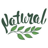 Logo Natural with leaves, natural product. Organic food badge in vector (cosmetic, food). Lettering Natural Royalty Free Stock Photo