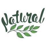 Logo Natural met bladeren, natuurlijk product Royalty-vrije Stock Foto