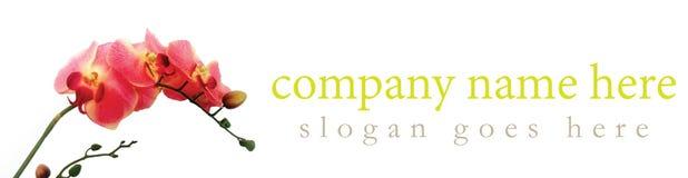 Logo naturale della società dell'orchidea rosa Fotografia Stock