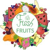 Logo och färgrik ljus frukt stock illustrationer