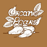 Logo organic pears. Logo with the word organic pears in a retro style Royalty Free Stock Image