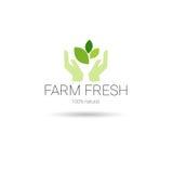 Logo organique écologique frais de vert d'icône de Web de produit naturel de ferme Photos stock
