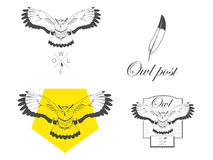 Logo owl vector illustration design Stock Photos