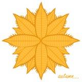Logo per l'autunno Fotografia Stock