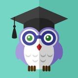 Logo piano di simbolo del segno dell'icona dello studente del gufo di graduazione Immagine Stock
