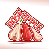 Logo Rose Apple Fruit de vecteur Photo stock