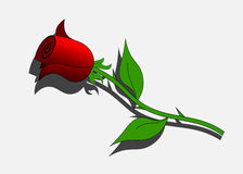 Logo rose. Royalty Free Stock Photo