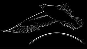 Logo seagulls Royalty Free Stock Image