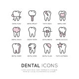 Logo Set Badge or Dental Care and Desease Royalty Free Stock Photography