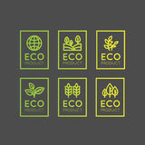 Logo Set Badge Fresh Organic, produit d'Eco, bio insigne de label d'ingrédient avec la feuille, la terre Images stock