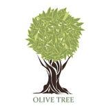 Logo of a stylized olive tree Stock Photo