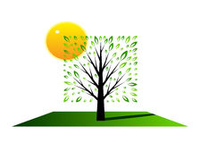Logo tree. A tree with green leaves of a geometrical figure and the sun Royalty Free Stock Photography