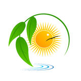 Logo. Tree leaves about water against the sun Royalty Free Stock Photo