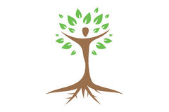 Logo umano dell'albero Immagine Stock