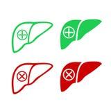 Logo umano dell'icona del fegato Fotografie Stock
