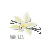 Logo Vanilla-landbouwbedrijfontwerp Stock Fotografie