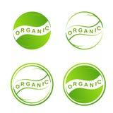 Logo verde astratto della foglia Icona di web della pianta su fondo bianco Simboli di eco di progettazione grafica nei cerchi Mod Immagini Stock
