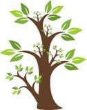 Logo vert d'arbre Photo libre de droits