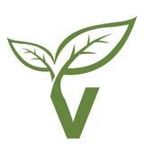 Logo vert de l'initiale V de vecteur Photographie stock