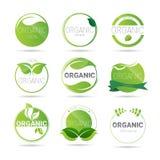 Logo vert réglé de produit naturel d'icône organique écologique de Web illustration de vecteur