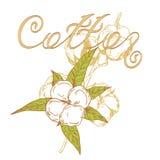 Logobomull Royaltyfri Fotografi